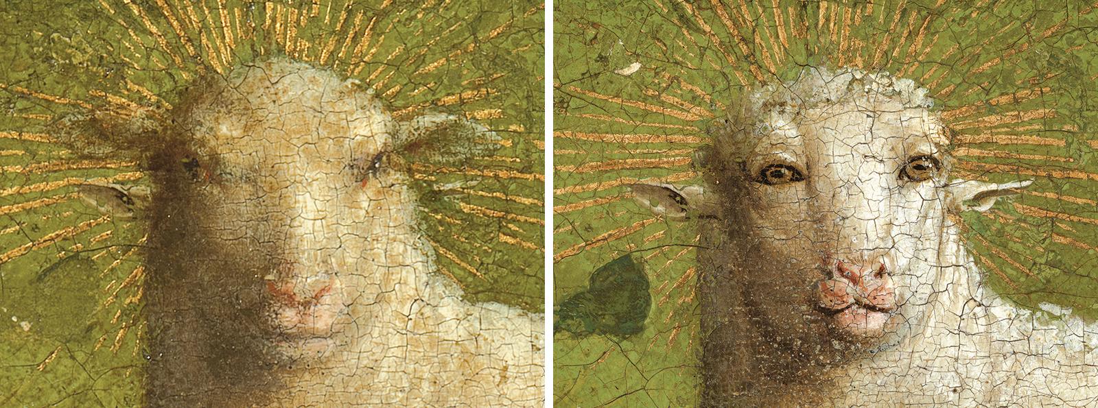 Detail hoofd van het Lam links voor behandeling - rechts na behandeling © Sint-Baafskathedraal Gent  Lukasweb.be-Art in Flanders vzw, foto KIK-IRPA
