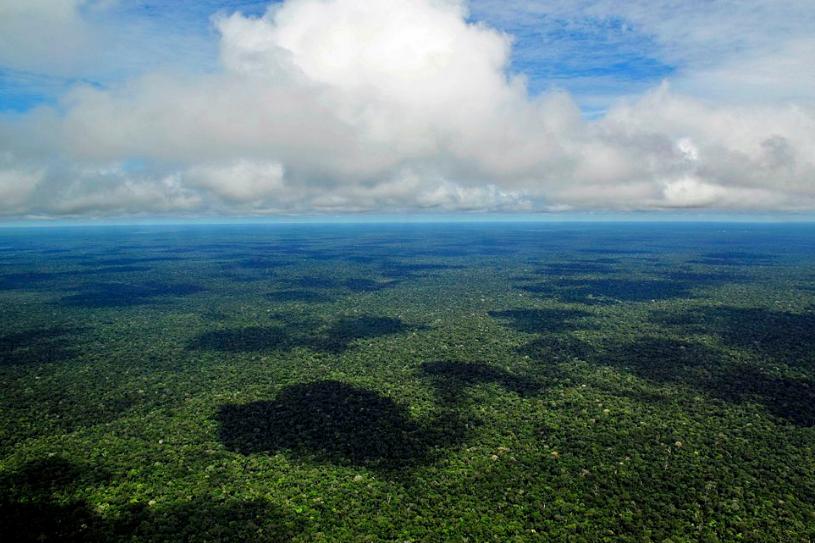 Het Amazonewoud © Zenit