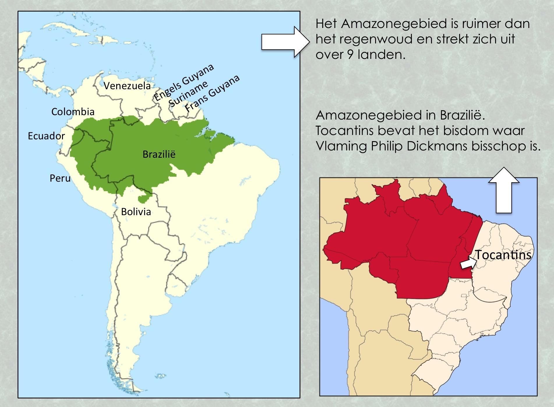 Amazone regenwoud en gebied in Brazilië. © Wikicommons / Lieve Wouters