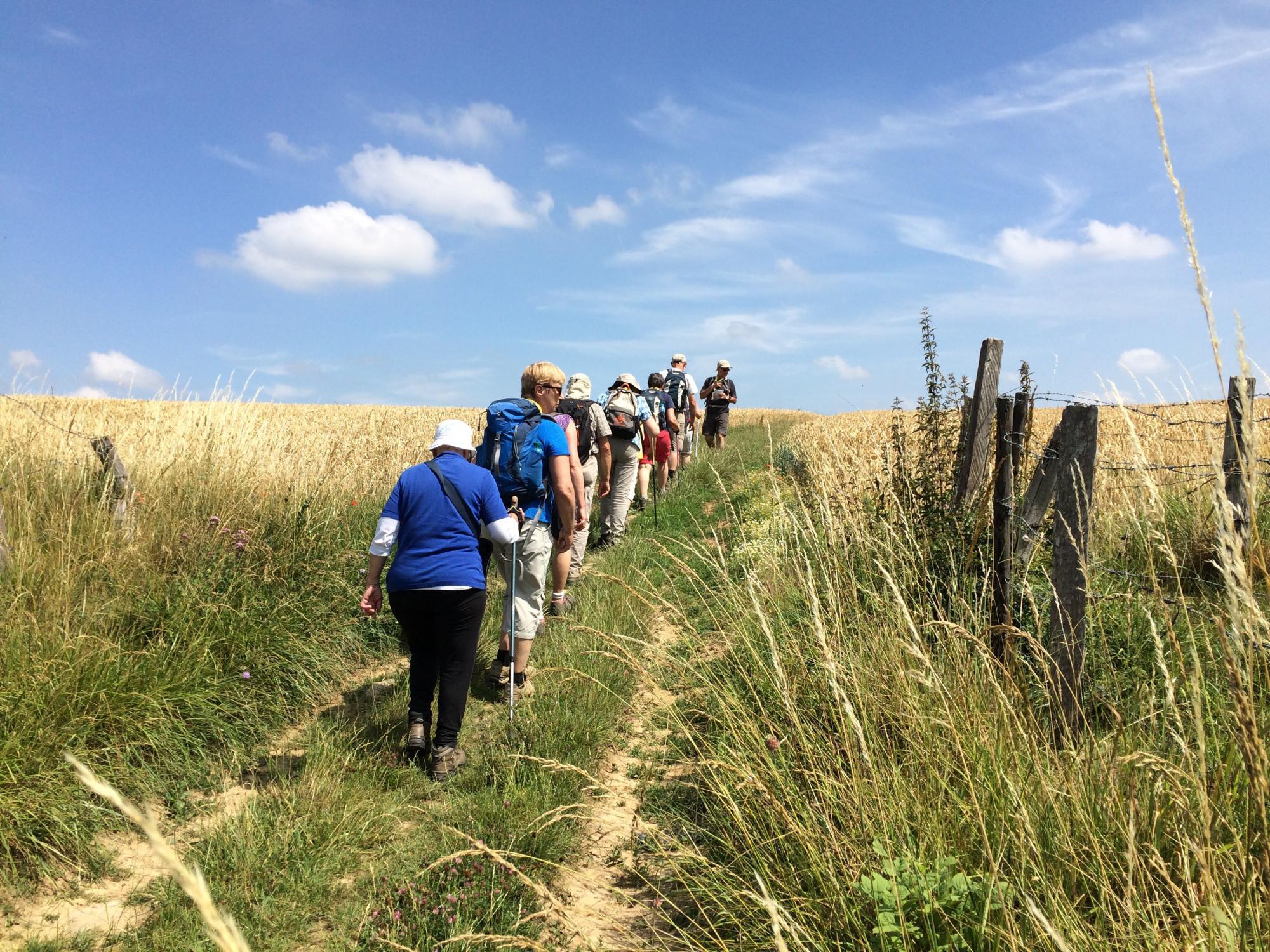 De pelgrimswandeling loopt door het natuurgebied van Hengelhoef en Ten Haagdoorn. © Diocesane werkgroep Pelgrimspastoraal