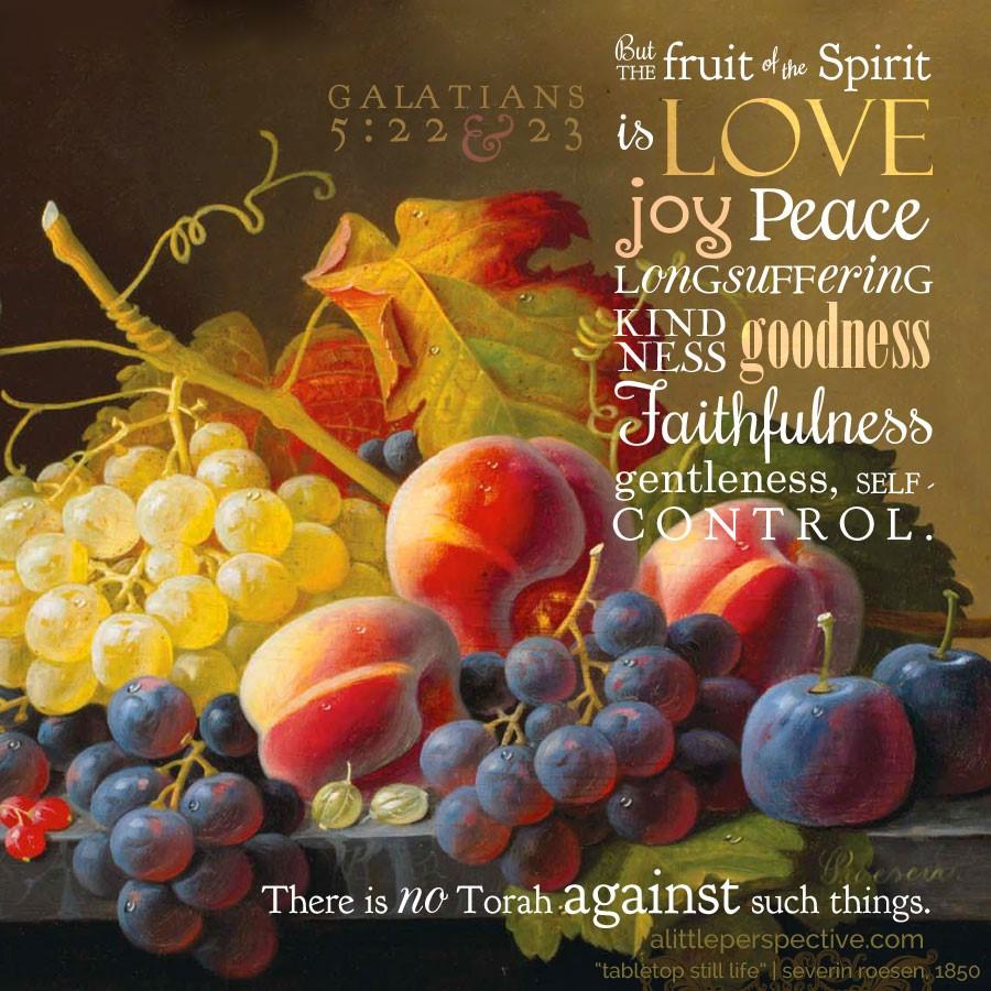 Vruchten van de Geest 3