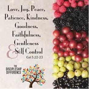 Vruchten van de Geest 5