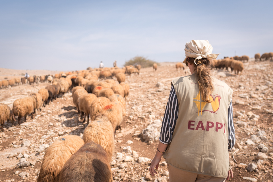 Een EAPPI-vrijwilliger vergezelt een schaapsherder in de Jordaanvallei. © Albin Hillert/Wereldraad van Kerken