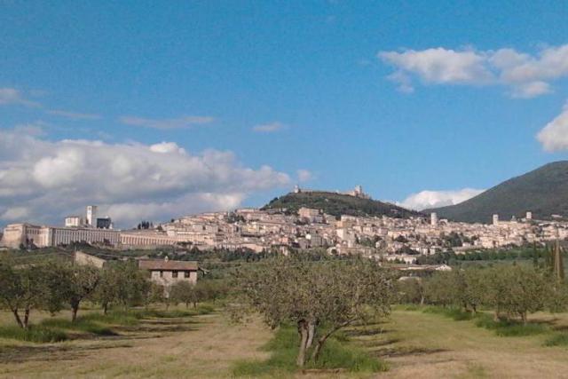 Het stadje Assisi © ofm.