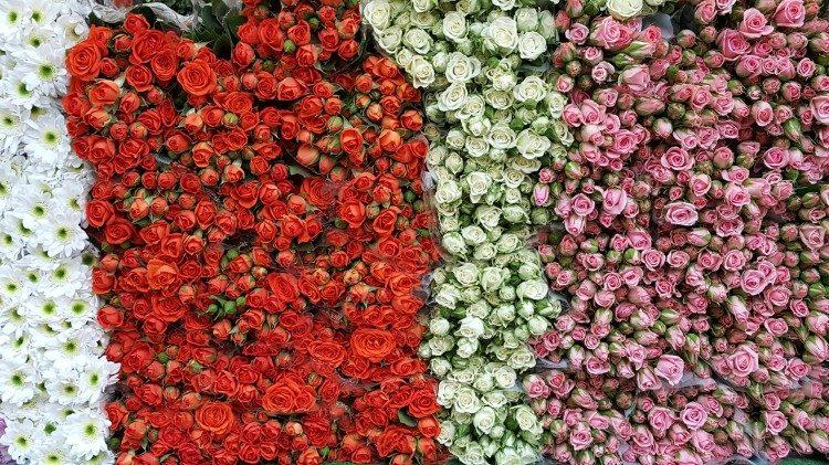 Flowerrain © Caritas Oostenrijk