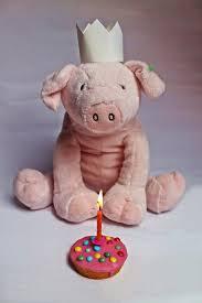 Op je verjaardag ben jij het feestvarken! © goededoelen.be