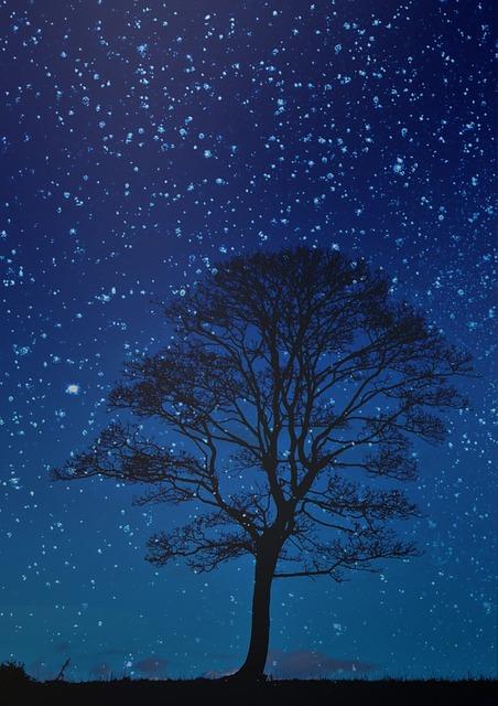 De nacht is stil, de woestijn hoort naar Gods stem en sterren spreken met elkaar. © Samantha Marinho on Pixabay