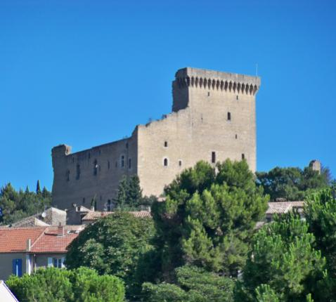 De resten van het kasteel dat onder impuls van paus Johannes XXII werd gebouwd. © Wikipedia