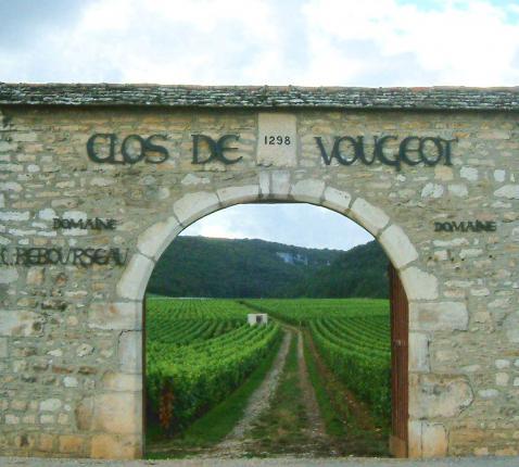 'Clos de Vougeot', de beroemde wijngaard in de Bourgogne. © Wikipedia