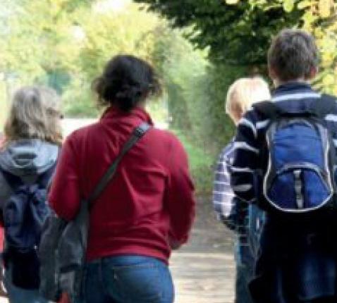 De Nederlandse vertaling van het Vademecum © Halewijn