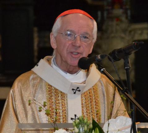 Kardinaal Jozef De Kesel © Jeroen Moens