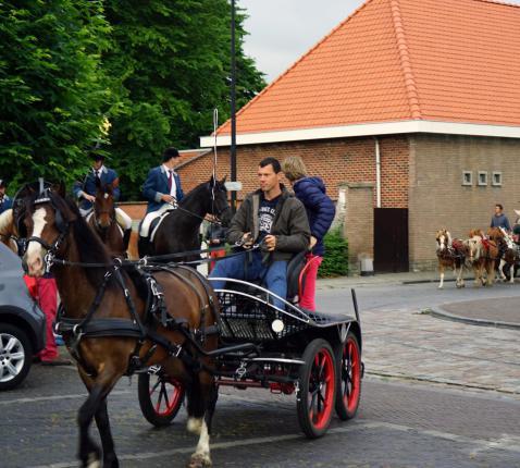 Sint-Pieter Ruiterommegang Eine