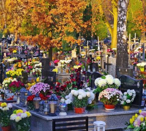 begraafplaats Allerzielen © JozefBabij van Pixabay