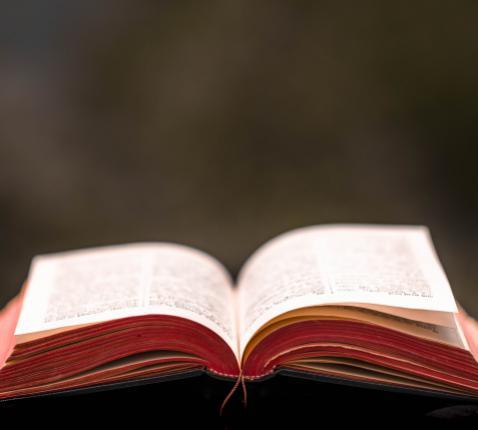 Nieuw Testament © Pixabay