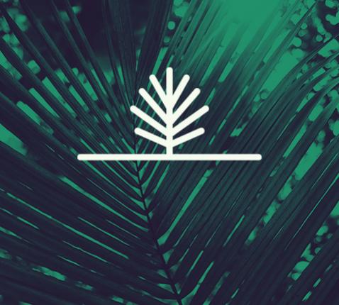 Palmzondag: red mij! © Sim D'Hertefelt
