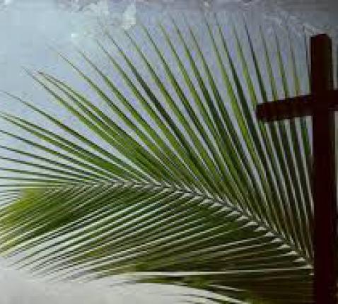 Palmzondag © bell-parochie.nl