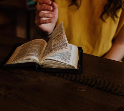 Schrijf gratis in voor de onlinecursus Kennismaken met de Bijbel © Priscilla du Preez op Unsplash