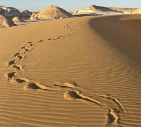 Woestijn © Flickr (CCV)
