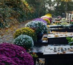 'Wat moet je doen bij zo'n graf, als het er eenmaal mooi bij ligt?' © Flickr / Sint-Katelijne-Waver
