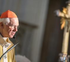 Voorgangers Kardinaal Jozef de Ketel