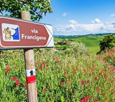 De Via Francigena © Vatican Media