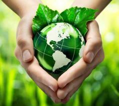 N.a.v. de Wereldgebedsdag voor het Behoud van de Schepping roepen de bisschoppen van ons land de katholieke gemeenschap op tot ecologisch engagement © VaticanMedia