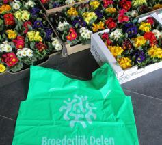 Bloemenverkoop door  vormelingen Rooierheide