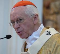 Kardinaal Jozef De Kesel in een interview met de Europese krant 'New Europe'. © New Europe
