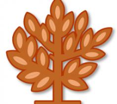 Logo Parochie Ninove © Alexander Vandaele