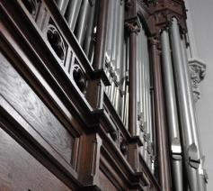 Orgel Sint-Pieterskerk © Daniël Duwyn