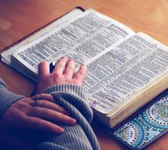 De mooiste teksten over de liefde uit de Bijbel #BijbelseLiefde © Foto Aaron Burden op Unsplash