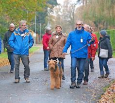 Een keer per maand gaat de vereniging wandelen. Ze verkent dan alle hoeken en kanten van het Waasland. © De Companjong