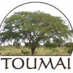 Toumaï