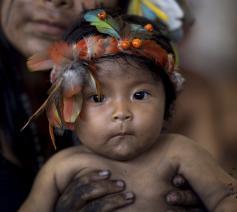 De bijzondere synode over het Amazonegebied vindt plaats van 6 tot 27 oktober in Vaticaanstad © sinodoamazonico.va