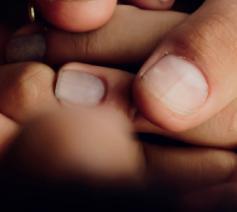 Detail uit de cover van 'Uw hand in mijn hand - Pastorale zorg bij het levenseinde' © IPID