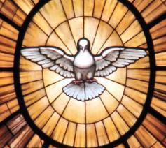Vaticanum II © igniswebmagazine