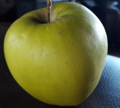 Presentatoren Annelien Coorevits en Rick Brandsteder poseren met een appel. © CC Vijf