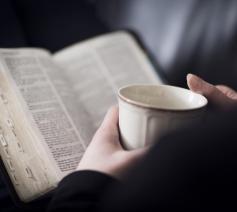 Bijbelgroepen © Daniël Duwyn