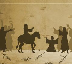 Dieren in de Bijbel: de ezel © Jeff Jacobs