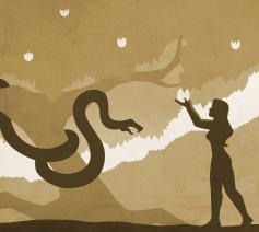Dieren in de Bijbel: de slang © Jeff Jacobs