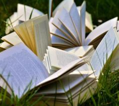 Boeken en vakantie ... dat is pas op reis gaan. © CC Pexels