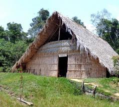 Brazilië - traditioneel huis in regenwoud © CC Pixabay