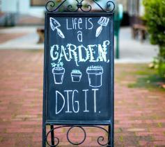Life is a garden. Dig it! (Het leven is een tuin. Graaf dieper.) © Carolyn V / Unsplash