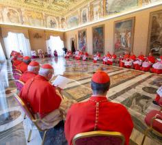 Paus Franciscus riep vanmorgen een gewoon openbaar consistorie bijeen om de heiligverklaring van Nunzio Sulprizio aan te kondigen © VaticanNews
