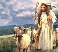 Jezus ken zijn schapen