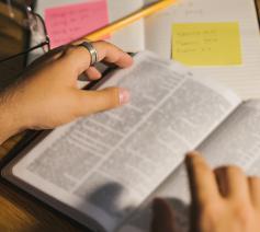 Schrijf gratis in voor de minicursus over psalm 13: Hoelang nog? © Foto Tima Miroshnichenko via Pexels