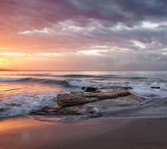 zee © Unsplash