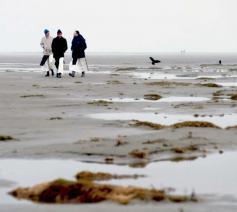 Trappisten keren na 400 jaar terug naar Schiermonnikoog © Monniken Schiermonnikoog