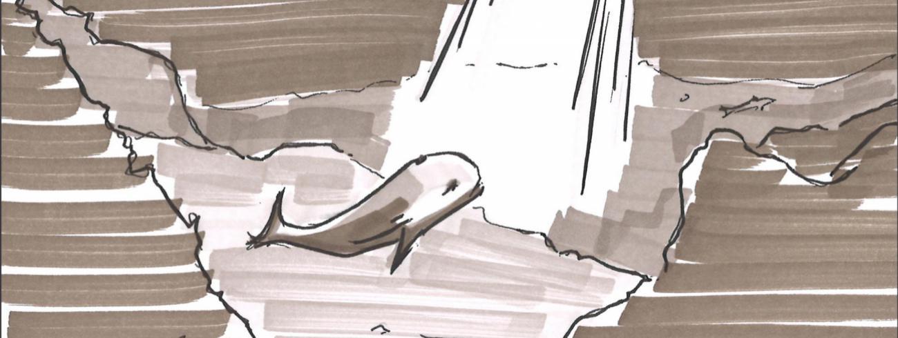 De walvis (deel van storyboard van Koen van Loocke) © Koen Van Loocke