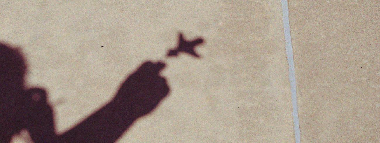 'Heeft alles wat vliegt, ook een schaduw?' © Flickr / Hanna Pritchett